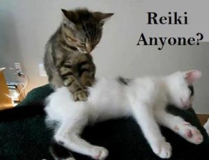 Reiki Sessions with Tracy Fance