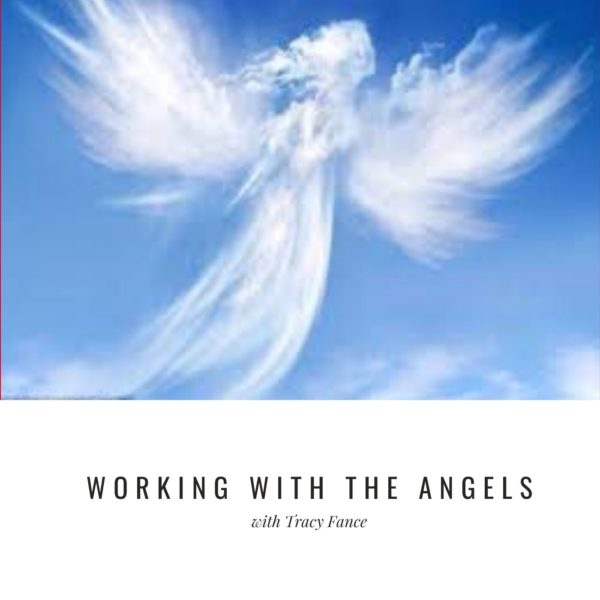 Angel Webinar Cover